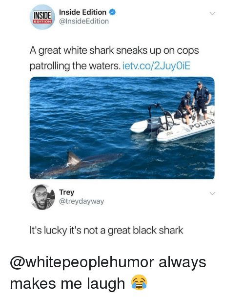 Memes, Shark, and Black: INSIDE Inside Edi  @InsideEdition  EDITION  A great white shark sneaks up on cops  patrolling the waters. ietv.co/2JuyOiE  POLICG  Trey  @treydayway  It's lucky it's not a great black shark @whitepeoplehumor always makes me laugh 😂
