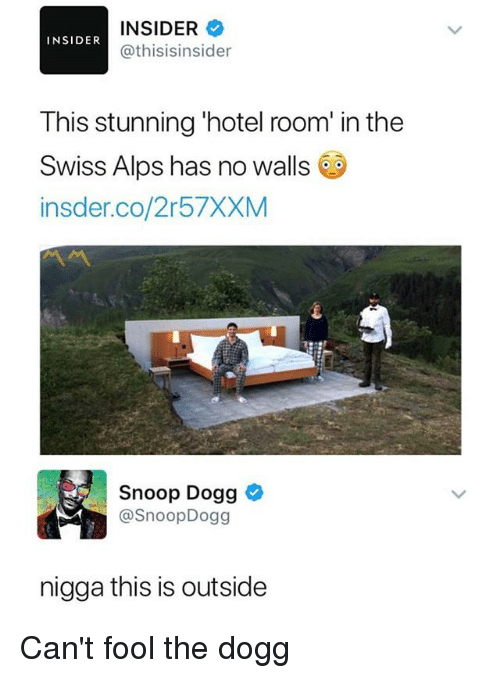 Memes, Snoop, and Snoop Dogg: INSIDER  @thisisinsider  INSIDER  This stunning 'hotel room' in the  Swiss Alps has no walls  insder.co/2r57XXM  Snoop Dogg  @SnoopDogg  nigga this is outside Can't fool the dogg