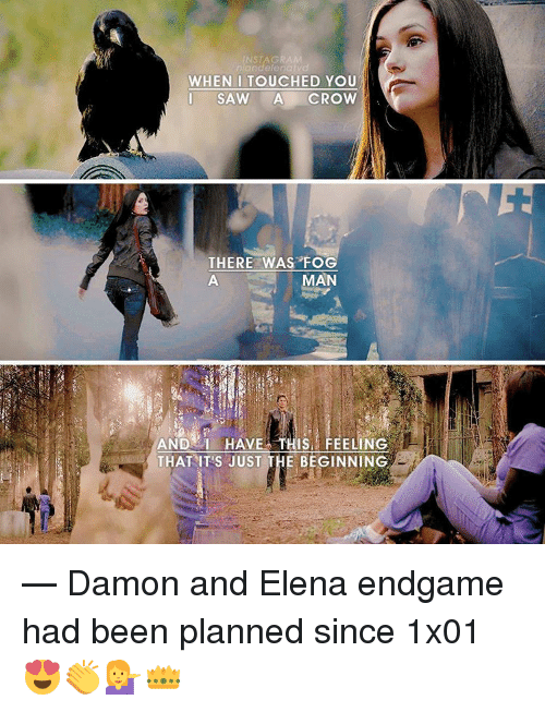 Memes, 🤖, and Crow: INST AGRA  niandelenai v  WHEN I TOUCHED YOU  I SAW  A CROW  THERE WAS FOG  MAN  AND HAVE THIS FEELING  THAT ITS JUST THE BEGINNING — Damon and Elena endgame had been planned since 1x01 😍👏💁👑