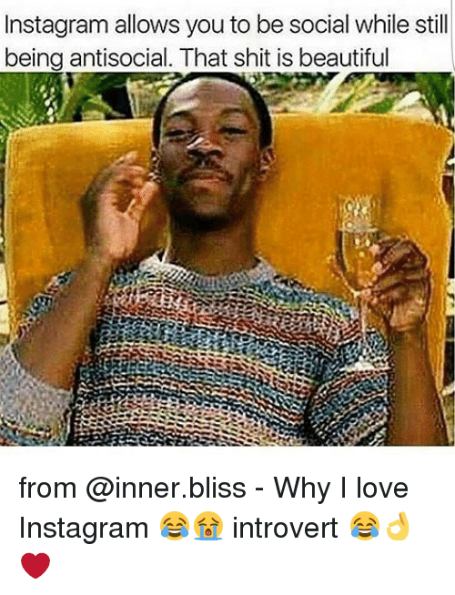 introverted: Instagram allows you to be social while still  being antisocial. That shit is beautiful from @inner.bliss - Why I love Instagram 😂😭 introvert 😂👌❤️