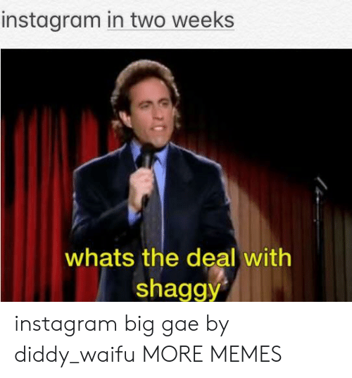Diddy: instagram in two weeks  whats the deal with  shaggy instagram big gae by diddy_waifu MORE MEMES