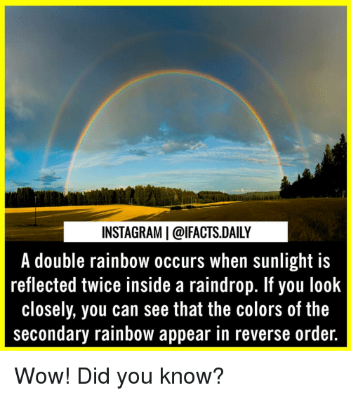 look closely: INSTAGRAM   @lFACTS.DAILY  A double rainbow occurs when sunlight is  reflected twice inside a raindrop. If you look  closely, you can see that the colors of the  secondary rainbow appear in reverse ordeir. Wow! Did you know?