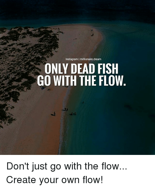 Instagram millionairedream only dead fish go with the for Only dead fish go with the flow