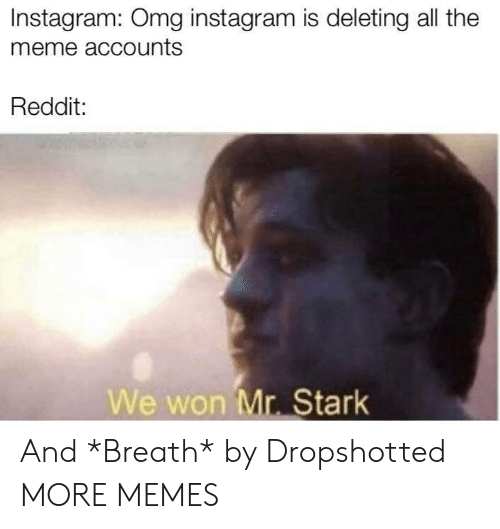 Meme Accounts: Instagram: Omg instagram is deleting all the  meme accounts  Reddit:  We won Mr. Stark And *Breath* by Dropshotted MORE MEMES