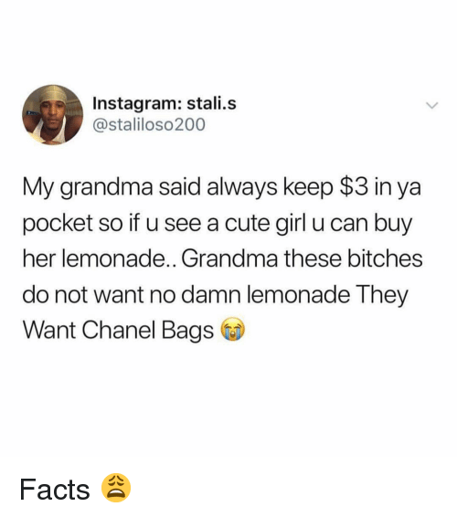 Chanel: Instagram: stali.s  @staliloso200  My grandma said always keep $3 in ya  pocket so if u see a cute girl u can buy  her lemonade.. Grandma these bitches  do not want no damn lemonade They  Want Chanel Bags Facts 😩