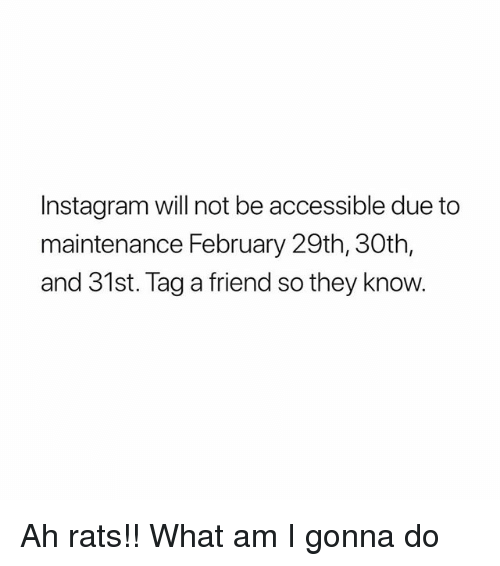 Instagram, Friend, and Will: Instagram will not be accessible due to  maintenance February 29th, 30th,  and 31st. Tag a friend so they know. Ah rats!! What am I gonna do