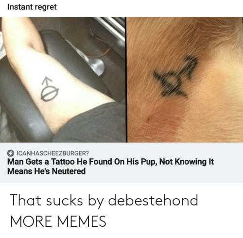 Instant Regret: Instant regret  ICANHASCHEEZBURGER?  Man Gets a Tattoo He Found On His Pup, Not Knowing It  Means He's Neutered That sucks by debestehond MORE MEMES