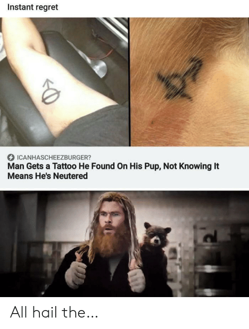 PUP: Instant regret  ICANHASCHEEZBURGER?  Man Gets a Tattoo He Found On His Pup, Not Knowing It  Means He's Neutered All hail the…