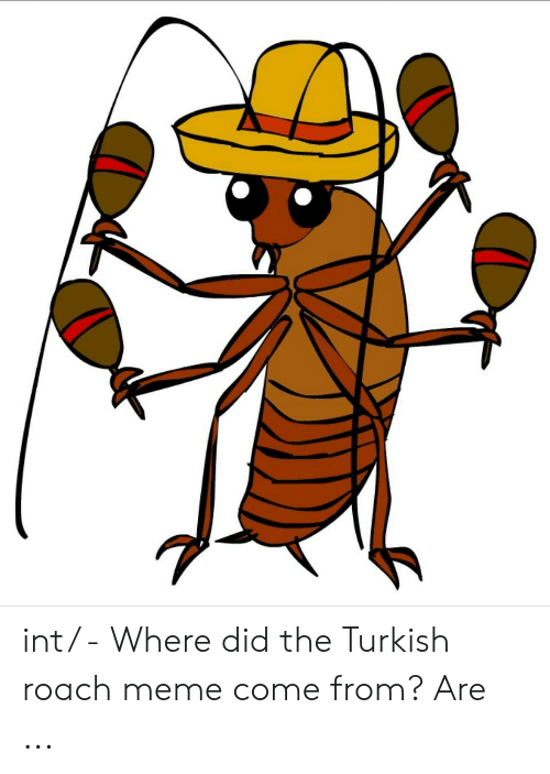 Roach Meme: int/ - Where did the Turkish roach meme come from? Are ...
