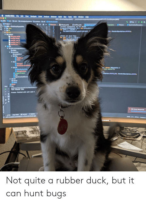 """Navigate: IntelliJ IDEA File Edit View Navigate Code Analyze Refactor Build Run Tools VCS Window Help  ddfs [-/Desktop/Apps/dfs) ...arcjcom/snowypeaksystems/commorut  dd  Dddfe arc com nowypeakaystems) En common utl DistributionU  Project  ddfs /Desktop/Apps/ddfs  Idea  lib  out  output  rifle.png.parity  testFile parity  testFile part O  testFile part1  testFile part  Driverjava x  Synchae  testFie.party  Dist  ifle.png.parlty  /Create FileChannels for all shords  ArrayList FiteChannet fesno Arraist  for (File f:shards)  fcs.add(FileChannel.cpentf.totrnt  Pairae  131  132  133  Standardpendption.  INrite out shard files  for (int 1 fcs.soH  Long pos byte  fetn.t  arc  v D com.anowypeakeya  C client  D common  C Oxceptions  a files  FileOblct  Folder  IOLogger  ORandomAccesFileW  ya util  DistributionUtlls  StringSanitizer  LoggerWrappor  Pair  SynchronizedQueu  nthrovs 10Exception  ady exists!"""")  enOption.CREATE NEW  anet  D server  DDFS  Driver  Run  Library/Java/JavaVirtualMachines/  Tine elapsed: 91ms  Run:  Process finished with exit code  DE Eror Occurred  Data ond m  Statistic  Terminal  TODO  Run  290L UT 4c  DBdid completed successhuilly In 1s 710 ms (4 minutes ago)  Stat  2017  ly of Champions Not quite a rubber duck, but it can hunt bugs"""