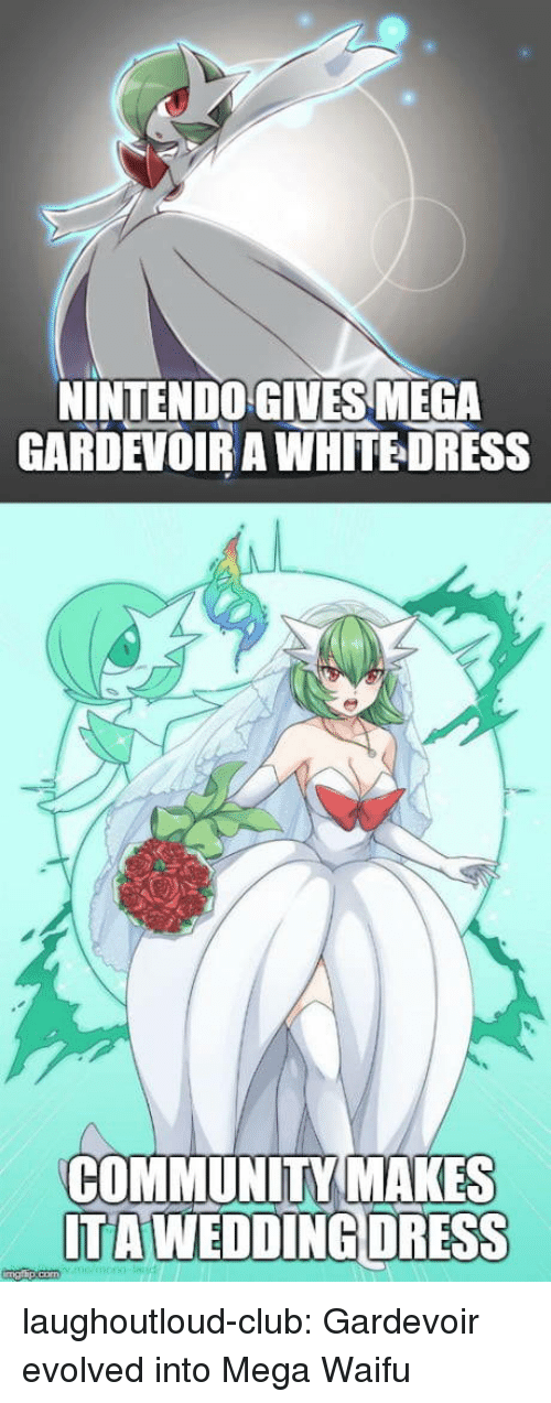 gardevoir: INTENDO GIVES MEGA  GARDEVOIR A WHITEDRESS  COMMUNITY MAKES  TAWEDDİNGDRESS laughoutloud-club:  Gardevoir evolved into Mega Waifu