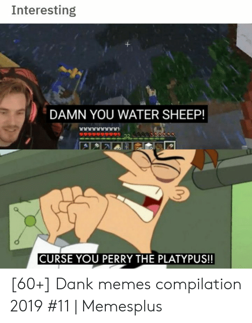 Dank Memes: Interesting  DAMN YOU WATER SHEEP!  www  32  CURSE YOU PERRY THE PLATYPUS!! [60+] Dank memes compilation 2019 #11 | Memesplus