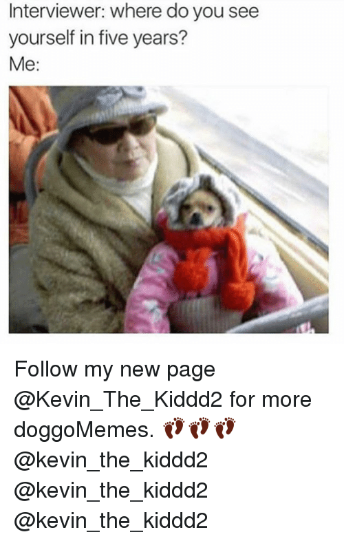 Memes, 🤖, and Page: Interviewer: where do you see  yourself in five years?  Me: Follow my new page @Kevin_The_Kiddd2 for more doggoMemes. 👣👣👣@kevin_the_kiddd2 @kevin_the_kiddd2 @kevin_the_kiddd2