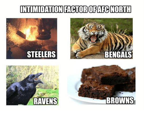Steelers: INTIMIDATION FACTOROFAFC NORTH  STEELERS  BENGALS  BROWNS  RAVENS