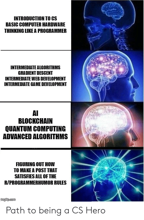 Blockchain: INTRODUCTION TO CS  BASIC COMPUTER HARDWARE  THINKING LIKE A PROGRAMMER  INTERMEDIATE ALGORITHMS  GRADIENT DESCENT  INTERMEDIATE WEB DEVELOPMENT  INTERMEDIATE GAME DEVELOPMENT  AI  BLOCKCHAIN  QUANTUM COMPUTING  ADVANCED ALGORITHMS  FIGURING OUT HOW  TO MAKE A POST THAT  SATISFIES ALL OF THE  R/PROGRAMMERHUMOR RULES  ingfip.com Path to being a CS Hero
