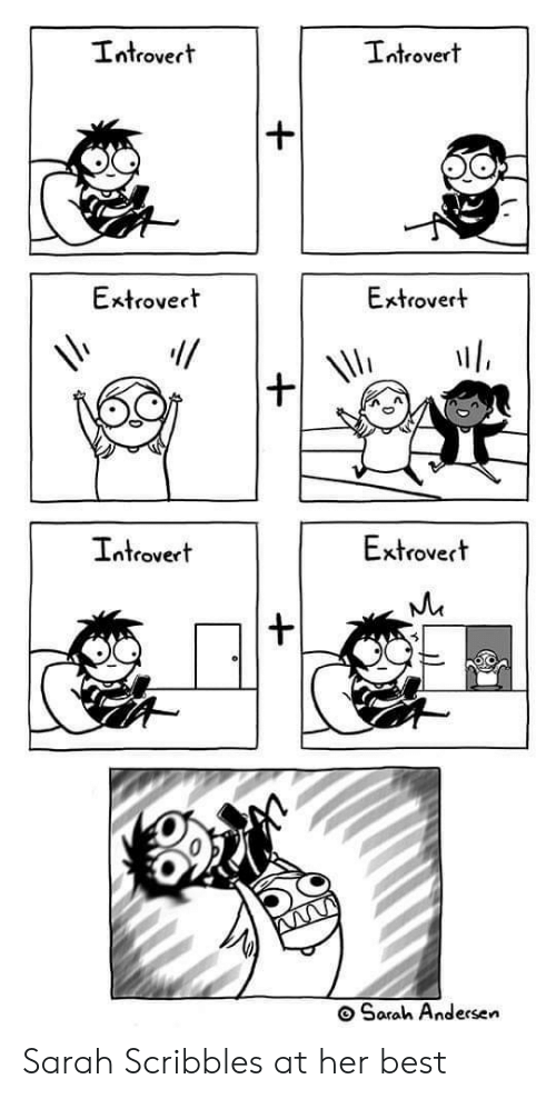 andersen: Introvert  Introvert  Extrovert  Extrovert  Extrovert  Introvert  Sarah Andersen Sarah Scribbles at her best