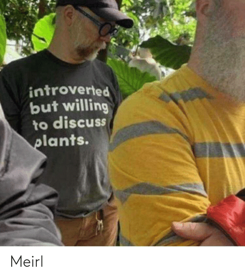plants: introverted  but willing  to discuss  plants. Meirl