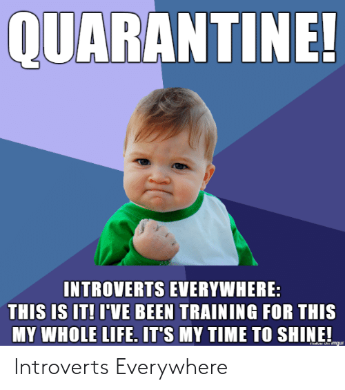 introverts: Introverts Everywhere