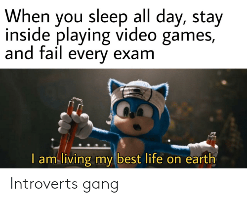 introverts: Introverts gang