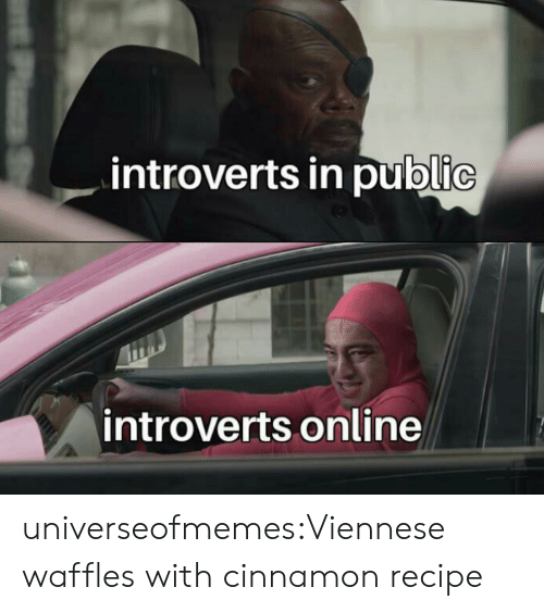 cinnamon: introverts in public  introverts online  PzS universeofmemes:Viennese waffles with cinnamonrecipe