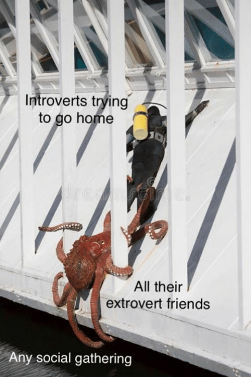 Friends, Home, and All: Introverts trying  to go home  All their  extrovert friends  Any social gathering
