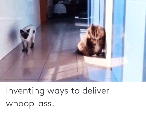 whoop: Inventing ways to deliver whoop-ass.