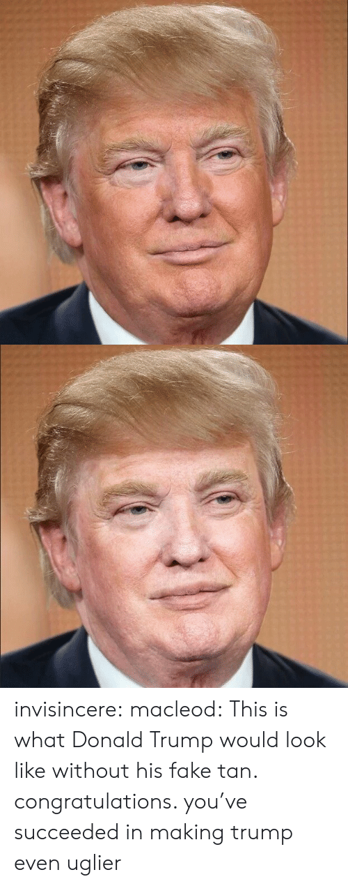 Donald Trump: invisincere:  macleod:  This is what Donald Trump would look like without his fake tan.  congratulations. you've succeeded in making trump even uglier