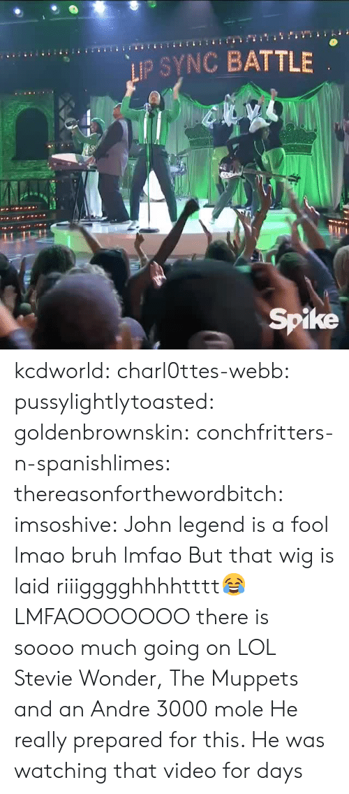 John Legend: IP SYNC BATTLE  Spike kcdworld:  charl0ttes-webb:   pussylightlytoasted:  goldenbrownskin:  conchfritters-n-spanishlimes:   thereasonforthewordbitch:  imsoshive:  John legend is a fool lmao  bruh lmfao  But that wig is laid riiigggghhhhtttt😂   LMFAOOOOOOO  there is soooo much going on   LOL Stevie Wonder, The Muppets and an Andre 3000 mole    He really prepared for this. He was watching that video for days