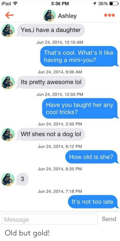 old-but-gold: iPad  5:36 PM  1 36%  Ashley  Yes,i have a daughter  Jun 24, 2014, 12:10 AM  That's cool. What's it like  having a mini-you?  Jun 24, 2014, 9:06 AM  Its pretty awesome lol  Jun 24, 2014, 12:50 PM  Have you taught her any  cool tricks?  Jun 24, 2014, 2:50 PM  Wtf shes not a dog lol  Jun 24, 2014, 6:12 PM  How old is she?  Jun 24, 2014, 6:35 PM  3  Jun 24, 2014, 7:18 PM  It's not too late  Send  Message Old but gold!