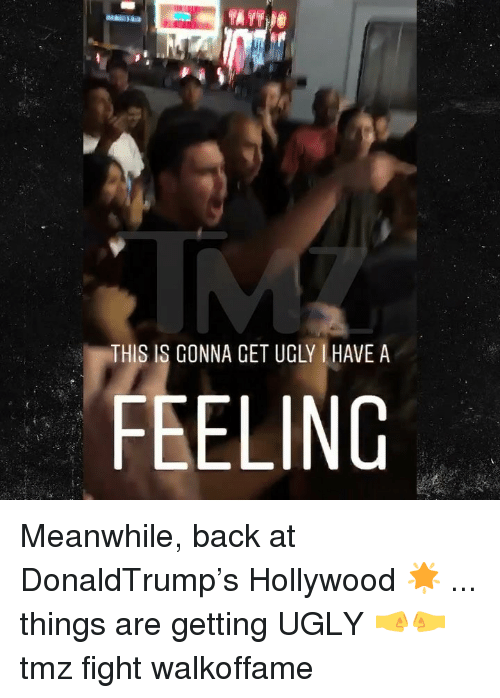 Memes, Ugly, and Fight: IR  THIS IS GONNA CET UGLY HAVE A  FEELING Meanwhile, back at DonaldTrump's Hollywood 🌟 ... things are getting UGLY 🤜🤛 tmz fight walkoffame