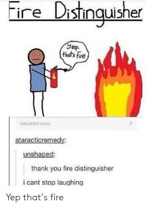 i cant stop: ire Distingusher  Yep  (that's fre  totumblr.com  ataracticremedy:  unshaped:  thank you fire distinguisher  i cant stop laughing Yep that's fire