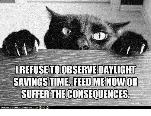 Daylight Savings Time: IREFUSETOOBSERVE DAYLIGHT  SAVINGS TIME FEED ME NOW OR  SUFFER THE CONSEQUENCES.