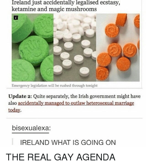 Ketamine: Ireland just accidentally legalised ecstasy,  ketamine and magic mushrooms  Emergency legislation will be rushed through tonight  Update 2: Quite separately, the Irish government might have  also accidentally managed to outlaw heterosexual marriage  today  bisexualexa:  IRELAND WHAT IS GOING ON THE REAL GAY AGENDA