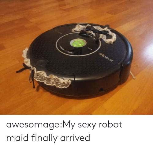 Robotic: IRobol awesomage:My sexy robot maid finally arrived