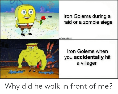 villager: Iron Golems during a  raid or a zombie siege  u/Caterpill420  Iron Golems when  you accidentally hit  a villager Why did he walk in front of me?