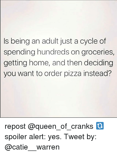 Being an Adult, Memes, and Pizza: Is being an adult just a cycle of  spending hundreds on groceries,  getting home, and then deciding  you want to order pizza instead? repost @queen_of_cranks 🔃 spoiler alert: yes. Tweet by: @catie__warren