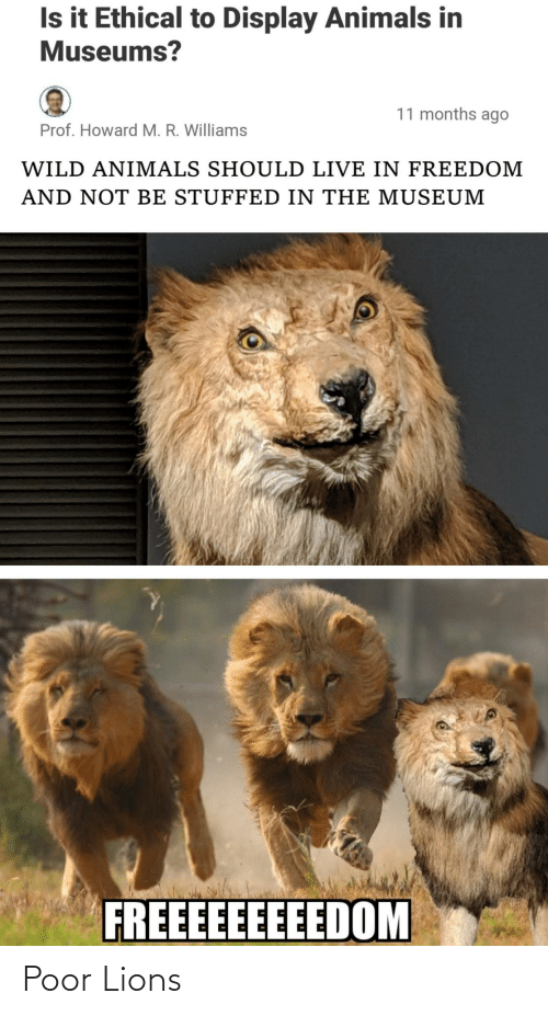Howard: Is it Ethical to Display Animals in  Museums?  11 months ago  Prof. Howard M. R. Williams  WILD ANIMALS SHOULD LIVE IN FREEDOM  AND NOT BE STUFFED IN THE MUSEUM  FREEEEEEEEEDOM Poor Lions