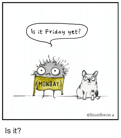 Memes, 🤖, and Is It Friday Yet: Is it Friday yet?  MONDAY  OREDANDHOWLING Is it?