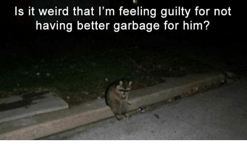 Weird, Garbage, and Him: Is it weird that l'm feeling guilty for not  having better garbage for him?