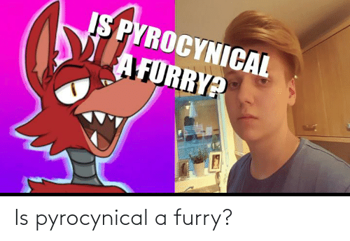 Pyrocynical: Is pyrocynical a furry?