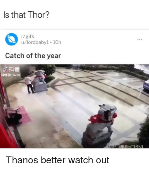 Memes, Watch Out, and Gifs: Is that Thor?  r/gifs  u/lordbaby1 10h  .9  Catch of the year  よ抖音  抖音号:T8288 Thanos better watch out
