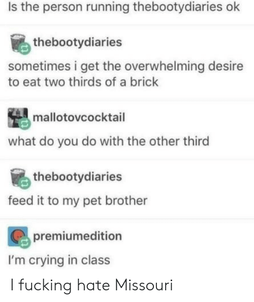 overwhelming: Is the person running thebootydiaries ok  thebootydiaries  sometimes i get the overwhelming desire  to eat two thirds of a brick  mallotovcocktail  what do you do with the other third  thebootydiaries  feed it to my pet brother  premiumedition  I'm crying in class I fucking hate Missouri