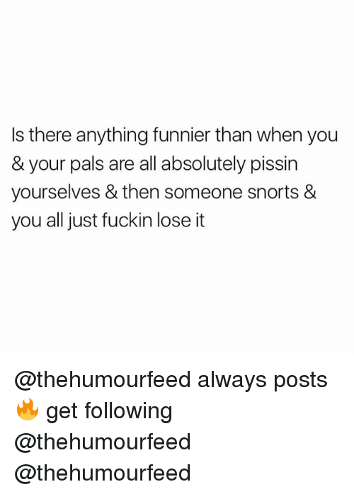British, Following, and All: Is there anything funnier than when you  & your pals are all absolutely pissin  yourselves & then someone snorts &  you all just fuckin lose it @thehumourfeed always posts 🔥 get following @thehumourfeed @thehumourfeed