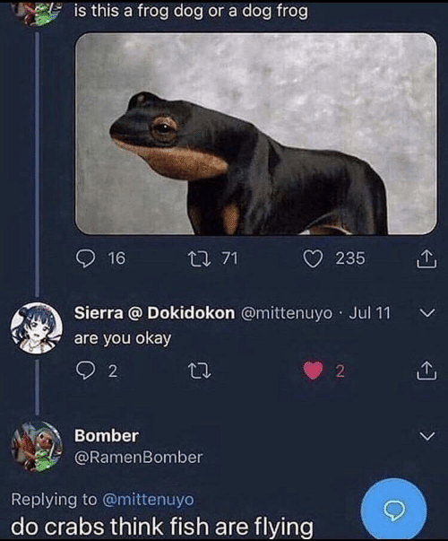 You Okay: is this a frog dog or a dog frog  16  t 71  235  Sierra @ Dokidokon @mittenuyo Jul 11  are you okay  L  2  2  Bomber  @RamenBomber  L  Replying to @mittenuyo  do crabs think fish are flying  >