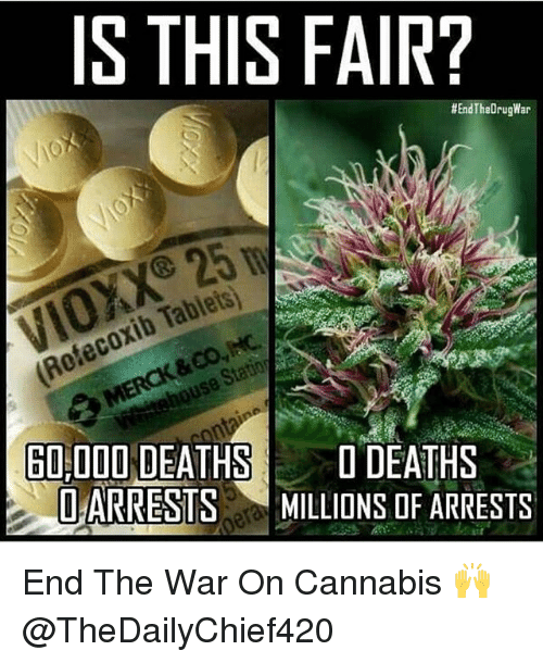 Memes, Tablets, and Cannabis: IS THIS FAIR?  #EndTheDrugWar  Refecoxib Tablets  60 000 DEATHS  DEATHS  Q ARRESTMILLIONS OF ARRESTS End The War On Cannabis 🙌 @TheDailyChief420