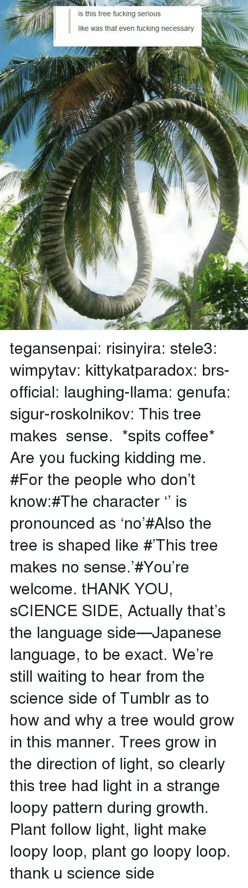 Are You Fucking Kidding: is this tree fucking serious  like was that even fucking necessary tegansenpai: risinyira:  stele3:  wimpytav:  kittykatparadox:  brs-official:  laughing-llama:  genufa:   sigur-roskolnikov:   This tree makes の sense.   *spits coffee*    Are you fucking kidding me.  #For the people who don't know:#The character 'の' is pronounced as 'no'#Also the tree is shaped like の#'This tree makes no sense.'#You're welcome.  tHANK YOU, sCIENCE SIDE,  Actually that's the language side—Japanese language, to be exact. We're still waiting to hear from the science side of Tumblr as to how and why a tree would grow in this manner.  Trees grow in the direction of light, so clearly this tree had light in a strange loopy pattern during growth. Plant follow light, light make loopy loop, plant go loopy loop.  thank u science side