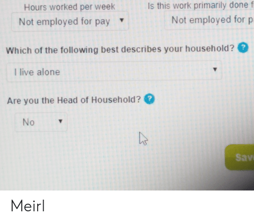 The Following: Is this work primarily done f  Hours worked per week  Not employed for p  Not employed for pay  Which of the following best describes your household??  I live alone  Are you the Head of Household ?  No  Sav Meirl