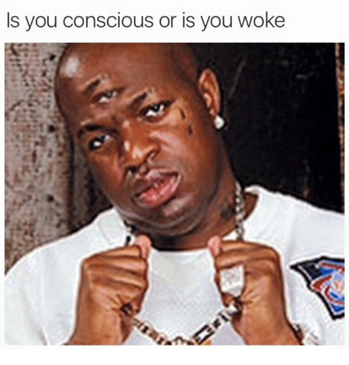 Dank Memes, Conscious, and Woke: Is you conscious or is you woke