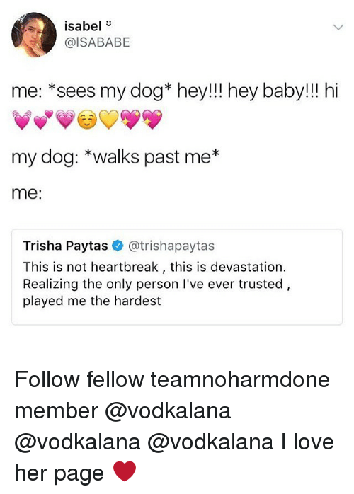 Love, Memes, and Baby: isabel  @ISABABE  me: *sees my dog* hey!!! hey baby!!! hi  my dog: *walks past me*  me:  Trisha Paytas @trishapaytas  This is not heartbreak, this is devastation.  Realizing the only person I've ever trusted,  played me the hardest Follow fellow teamnoharmdone member @vodkalana @vodkalana @vodkalana I love her page ❤️