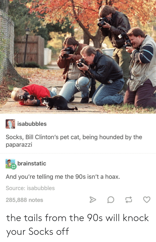 the 90s: isabubbles  Socks, Bill Clinton's pet cat, being hounded by the  paparazzi  brainstatic  And you're telling me the 90s isn't a hoax.  Source: isabubbles  285,888 notes the tails from the 90s will knock your Socks off